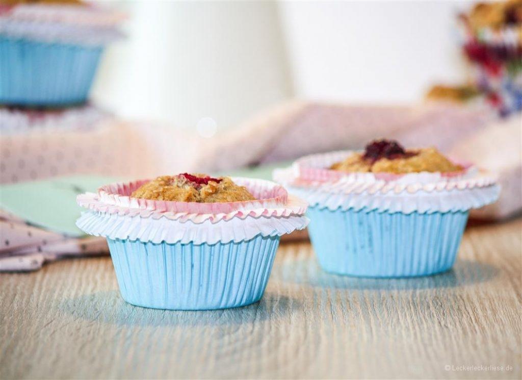 Muffins_1b (Medium)